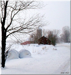 Farm in winter (Lida Rose) Tags: road winter red white snow barn farm country countryroad haybales lidarose belfortny interestingness116 belfortroad explore09feb06
