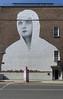 STREET ART IN LIMERICK [CITY CENTRE]-105165