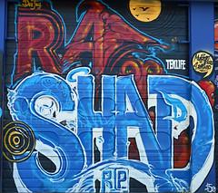 (SA_Steve) Tags: streetart art newjersey mural jerseycity nj pepboys formerpepboysstore