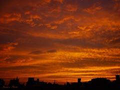 Burning Sky @2015-06-27 (Annie ( 00 )) Tags: sunset sky lumix burning annie  naka  gf1 annienaka