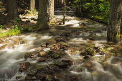 Rush (joshvanderzanden) Tags: park trees snow mountains creek forest montana stream long exposure glacier national