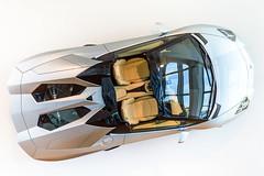 Lamborghini Aventador Roadster (*AM*Photography) Tags: auto italy car italian nikon automobile exotic lamborghini supercar roadster v12 d3200 worldcars aventador lp7004
