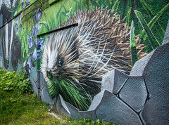 Hedgehog Urban Art (Cath Scott) Tags: city urban art scott glasgow wildlife hedgehog cath merchant