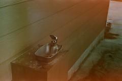 47480019 (noelle_rae) Tags: zorki jupiter8 50mm fsu soviet rangefinder 35mm analog film fujifilm fujicolor superia xtra 400 kmz krasnogorsky zavod