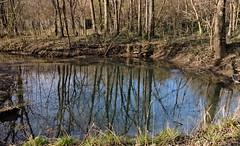 The_Blue_Hole_8988 (McConnell Springs) Tags: lexingtonky lexingtonparksrecreation spring naturalspring bluehole artesianspring mcconnellspringspark