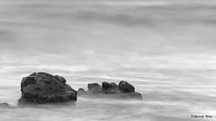 LLARGA_08-12-16_17 (manel_bru) Tags: 2016 albades llarga natura mar platja valencia pujol bn