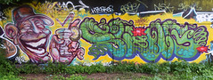 Skifo   •   Swing (HBA_JIJO) Tags: streetart urban graffiti vitry vitrysurseine art france hbajijo wall mur painting letters peinture lettrage lettre lettring writer murale paris94 spray bombeaerosol boire verre