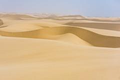 dunes at sandwich harbour (catherina unger) Tags: namibia safari wild dunes desert sandwich harbour sand africa