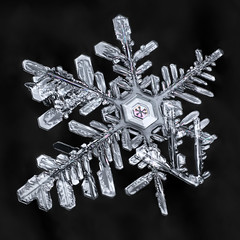 Snowflake-a-Day #36