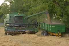 Johnh Deere 2256 Combine Harvester Unloading Spring Barley to a Eureka Trailer (Shane Casey CK25) Tags: johnh deere 2256 combine harvester unloading spring barley eureka trailer rathcormac sb ain harvest grain2016 grain16 harvest2016 harvest16 corn2016 corn crop tillage crops cereal cereals golden straw dust chaff county cork ireland irish farm farmer farming agri agriculture contractor field ground soil earth work working horse power horsepower hp pull pulling cut cutting knife blade blades machine machinery collect collecting mähdrescher cosechadora moissonneusebatteuse kombajny zbożowe kombajn maaidorser mietitrebbia nikon d7100