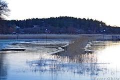 FOTO6758 (Peter Ghita) Tags: winter fourseasons lake landscape pentaxk5 smcpentaxm50mmf17