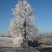 gasthaus-frische-quelle_bilder_winterimpression