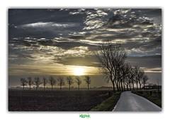 POLDERLANDSCHAP van WEST-VLAANDEREN / VEURNE (régisa) Tags: westerpoort veurne furnes belgië belgique vlaanderen polder landschap paysage landscape eluvium