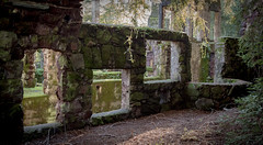 Not-so-Ancient Ruins (glo photography) Tags: california glenellenca gloriasalvanteglophotography jacklondon jacklondonstatepark northerncalifornia sonomacounty wolfhouse facade historic mansion moss ruins statepark stone window winecountry