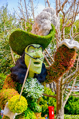 Captain Hook (disneylori) Tags: captainhook peterpan topiary flowerandgardenfestival unitedkingdom worldshowcase epcot waltdisneyworld disneyworld wdw disney