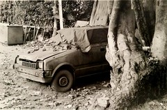 Abandoned car in a field near the courthouse of Thessaloniki, Canon AE1 program, Kodak TX 400 (akis_zat) Tags: thessaloniki blackandwhite monochrome canonae1program kodaktx400 car