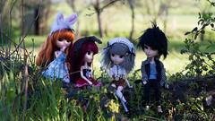 My doll family! (MintyP.) Tags: family 6 ana dolls sony wig groove pullip fc lead rs paja regen custo melba regeneration merl nex tugdual obitsu taeyang fullcusto mintypullip elwyna