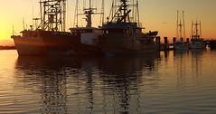 _MG_0947 (michaelinvan) Tags: sunset boats richmond wharf fishermans