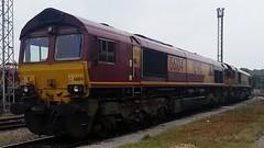 66104 66098 (DBS 60100) Tags: gm shed class66 ews dbschenker