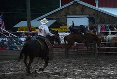2015 Marshfield Independence Day Rodeo (Adventurer Dustin Holmes) Tags: events event rodeo bronco 4thofjuly bronc 2015 broncriding buckingbronco buckingbronc broncoriding webstercountyfairgrounds marshfieldindependencedayrodeo independencedayrodeo july42015
