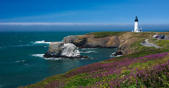 Yaquina Head Lighthouse (Dave Stromberger) Tags: ocean lighthouse water oregon us unitedstates newport yaquinahead