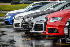Audi Front Ends (M2DAR2) Tags: a4 audi a5 s4 s5 quattro r8 waterfest rs5
