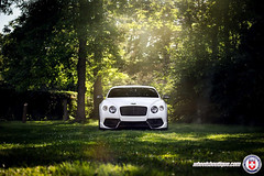 Bentley Continental GT on HRE TR107 (wheels_boutique) Tags: continental gt bentley hre hrewheels wheelsboutique tr107 teamwb drivingemotions