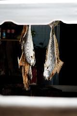 Auswahl-5951 (wolfgangp_vienna) Tags: thailand island asia asien harbour insel ko seafood hafen trat kut kood kokood kokut kohkut aoyai