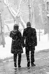 A snowy day (Esmaeel Bagherian) Tags: snow esmaeelbagherian blackandwhite monochrome vakilabad mashhad 2016 1395 snowy snowyday cold اسماعیلباقریان نیکون سیاهوسفید برف روزبرفی برفی مشهد بوستانوکیلآباد وکیلآباد