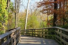 Lake Roland ~ entering the park (karma (Karen)) Tags: baltimore maryland lakeroland parks boardwalks trees fallcolor fences hff