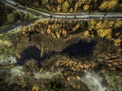 Bold Forest Park (sammys gallery) Tags: bold forest winter countrypark countryside park aerial dronecamera sthelens