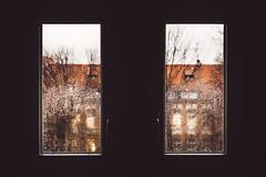November rain (the girl who made it on her own) Tags: ronakeller rainydays autumn red novembercolours raininnovember unidays windowview merzakademie stuttgart novemberrain