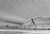 (Magdalena Roeseler) Tags: street strassenfotografie streetphotography blackandwhite olympus geometry lines calatrava architecture monochrome human people liege