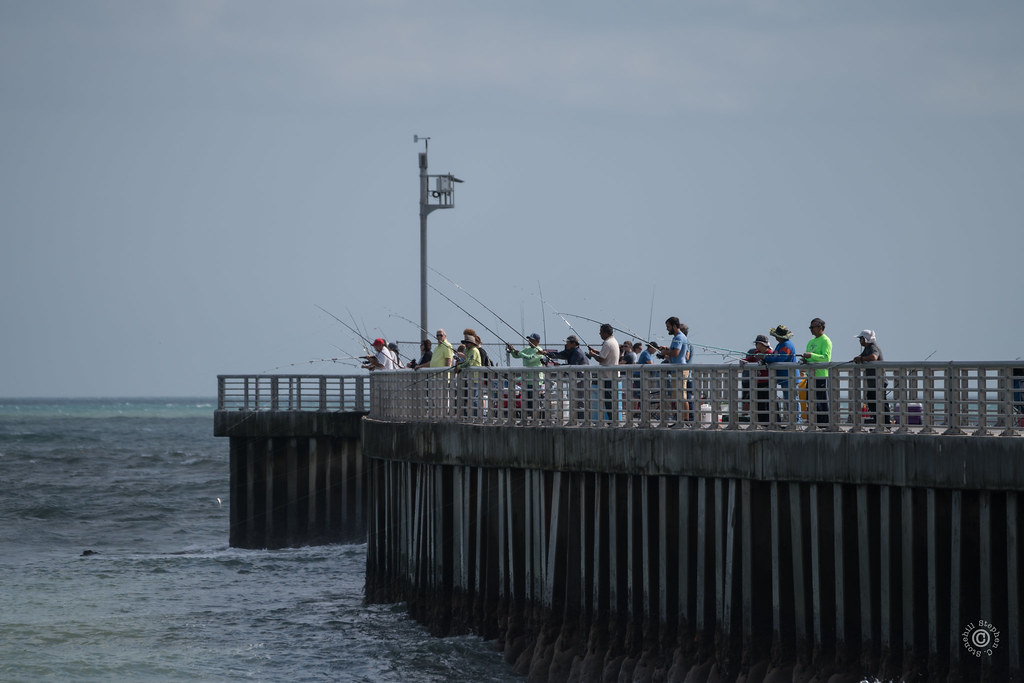 The world 39 s best photos of florida and sebastian flickr for Sebastian inlet fishing pier