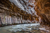 Virgin River Narrows Downstream (Jeffrey Sullivan) Tags: virgin river narrows slot canyon zion national park springdale southern utah american southwest landscape nature travel photography canon eos 6d photo copyright jeff sullivan 2016 november road trip hiking