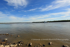 Mighty Mississippi (Black.Doll) Tags: cairo illinois alexandercounty ohioriver mississippiriver