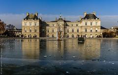 Vague de froid sur le Sénat. Paris, janv 2017 (Bernard Pichon) Tags: paris îledefrance france fr bpi760 jardinduluxembourg sénat bassin gel galce froid