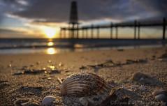 morning sunbath (Sònia CM) Tags: sea seascape sky sunrise beach bokeh bridge sand panasonic lumix lumixfz2000 lumixfz2500 paisatge platja playa landscape l wow