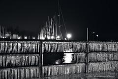 Les Mâts et la Glace (Franck Baduel) Tags: léman arctique polaire glace tempète yvoire evian