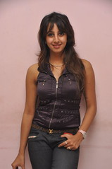 South Actress SANJJANAA Unedited Hot Exclusive Sexy Photos Set-15 (1)
