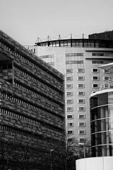 Parque das Nacões (miza monteiro) Tags: parquedasnacoes lisboa lisbon streetphotography people river bw