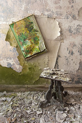 hanging on by a thread. (Explored 6/25/15) (stevenbley) Tags: house ny newyork history abandoned home nature painting table artwork woods rust bokeh decay empty exploring urbanexploration gaudy tacky mold catskills peelingpaint urbanexploring timewarp urbex musty canon5dmkii 5dmarkii borschbelt guerillahistorian