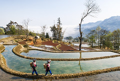 891w (Nadia Isakova) Tags: china trip travel girls 2 vacation two people woman southwest tourism girl horizontal female rural landscape asian march spring women holidays nadia asia rice symbol terrace farm traditional sightseeing chinese terraces tribal worldheritagesite tribes destination farms leisure females agriculture yunnan tribe ethnic minority hani riceterraces paddyfield riceterrace yuanyang eastasia ethnicminority terracing traveldestinations ethnicgroup nadiaisakova