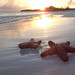 Sunset at Taylor Bay Beach, Providenciales (Provo), Turks and Caicos Islands (TCI)