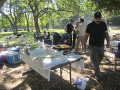 Vasona Park, Los Gatos ,13 bedar . (reza fakharpour) Tags: nature persian picnic outdoor newyear losgatos iranians 13bedar northercalifornia sizdehbedar vasonapark sabzeh 2015