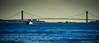 Verrazano-Narrows Bridge viewed from Jersey City NJ (mbell1975) Tags: jerseycity newjersey unitedstates us verrazanonarrows bridge viewed from jersey city nj new york newyork ny nyc manhattan usa america american bro brücke puente pont ponte brug bouwwerk most brig köprü bur bay hudson river water