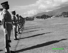 Line and Shadows (Halcon122) Tags: jdf changeofcommand ceremony soldiers line shadows ja bw olympusem5markii