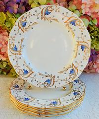 Vintage Grosvenor English Porcelain Dinner Plates ~ Royce ~ Gold (Donna's Collectables) Tags: vintage grosvenor english porcelain dinner plates ~ royce gold