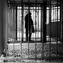 In search of the key (pascalcolin1) Tags: paris13 homme man grilles clés key lumière light ombre shadows photoderue streetview urbanarte noiretblanc blackandwhite photopascalcolin carré square