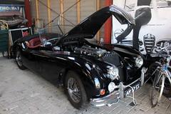 1956 Jaguar XK 140 (Davydutchy) Tags: car collection private privé sammlung collectie automobile auto automobiel bil voiture pkw klassiker classic jaguar xk 140 drophead convertible cabriolet cabrio welsum trn nieuwjaarsborrel january 2017